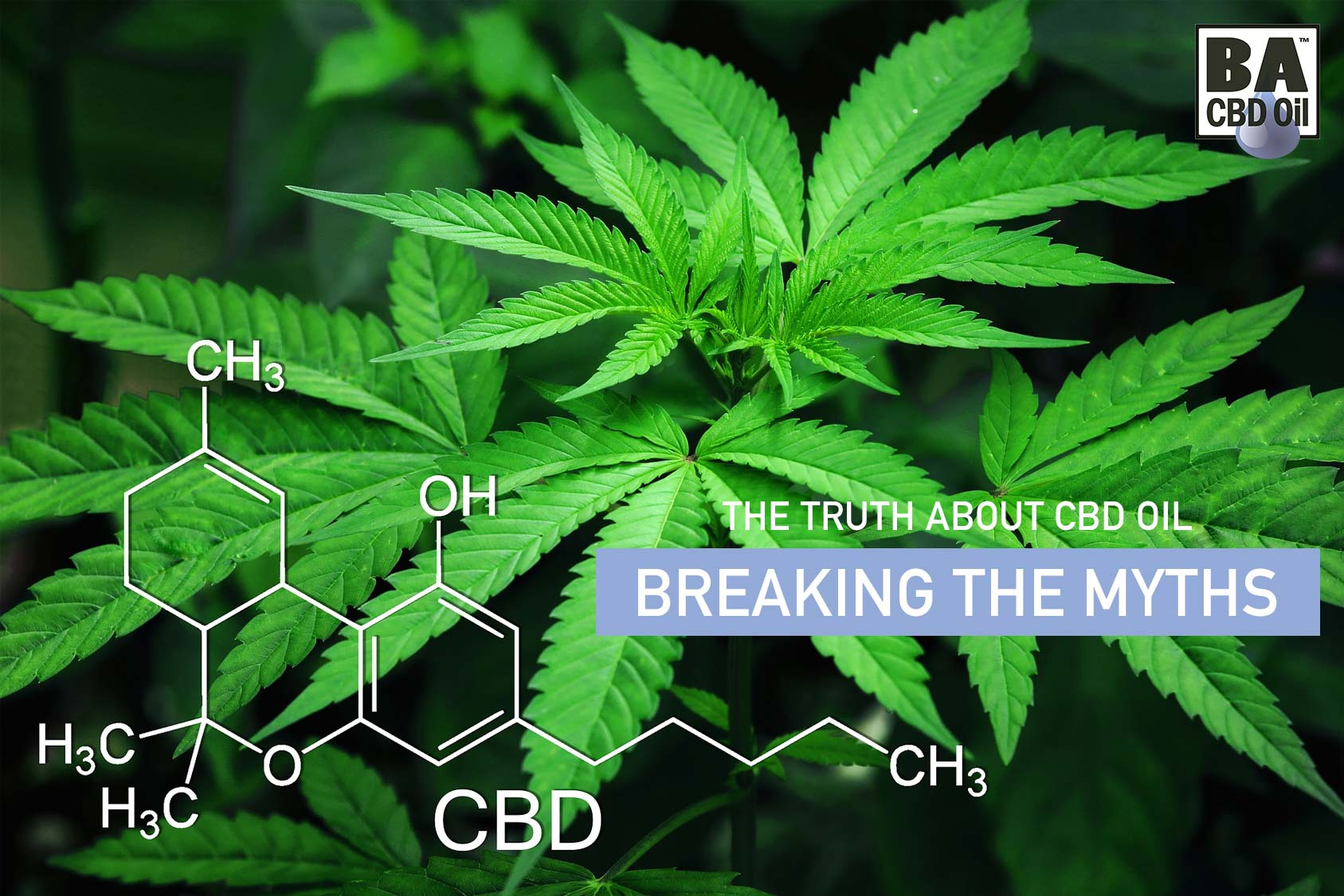 Truth About CBD Oil